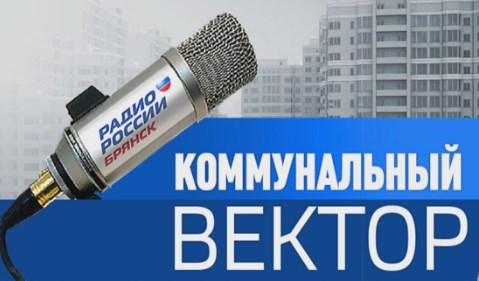 Генеральный директор ОАО«Чистая планета»Владимир Чашниковв прямом эфире«Радио России. Брянск»