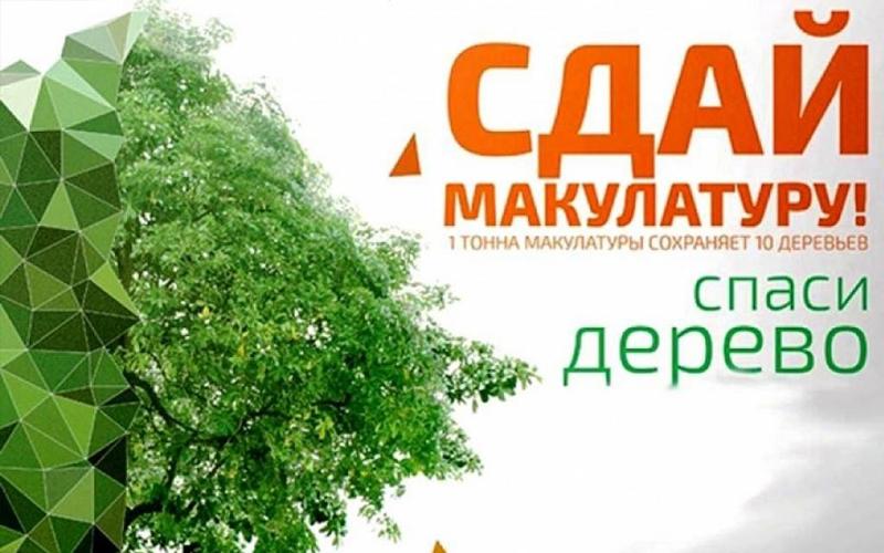Сдай макулатуру – спаси дерево!