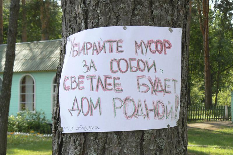 Жители Брянска жалуются на свалки, которые устраивают сами