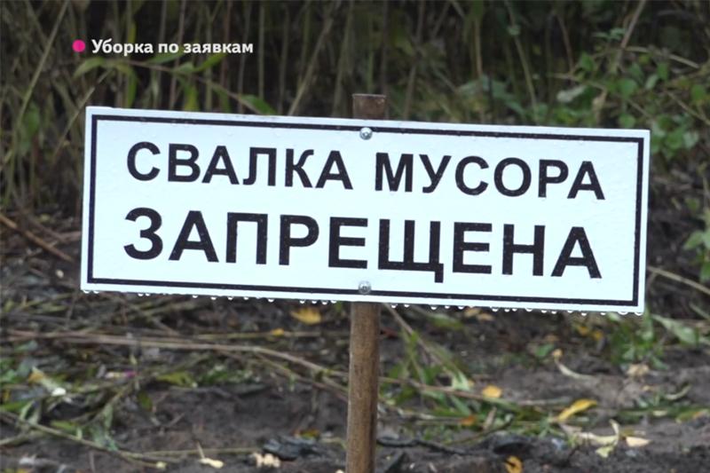 """Заросшие мусором дачи 'Садовода', попросили помощи у """"Чистой Планеты"""""""