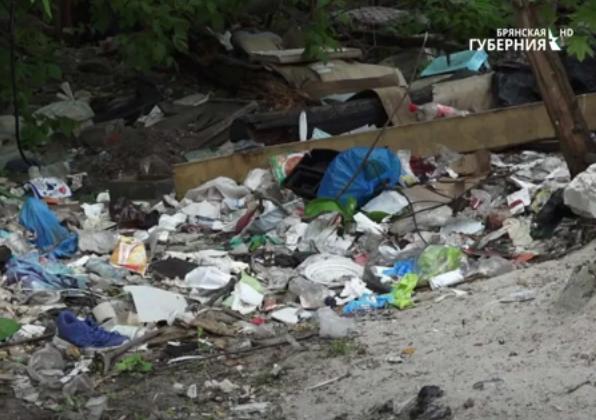Жители Брянска жалуются на растущие несанкционированные свалки